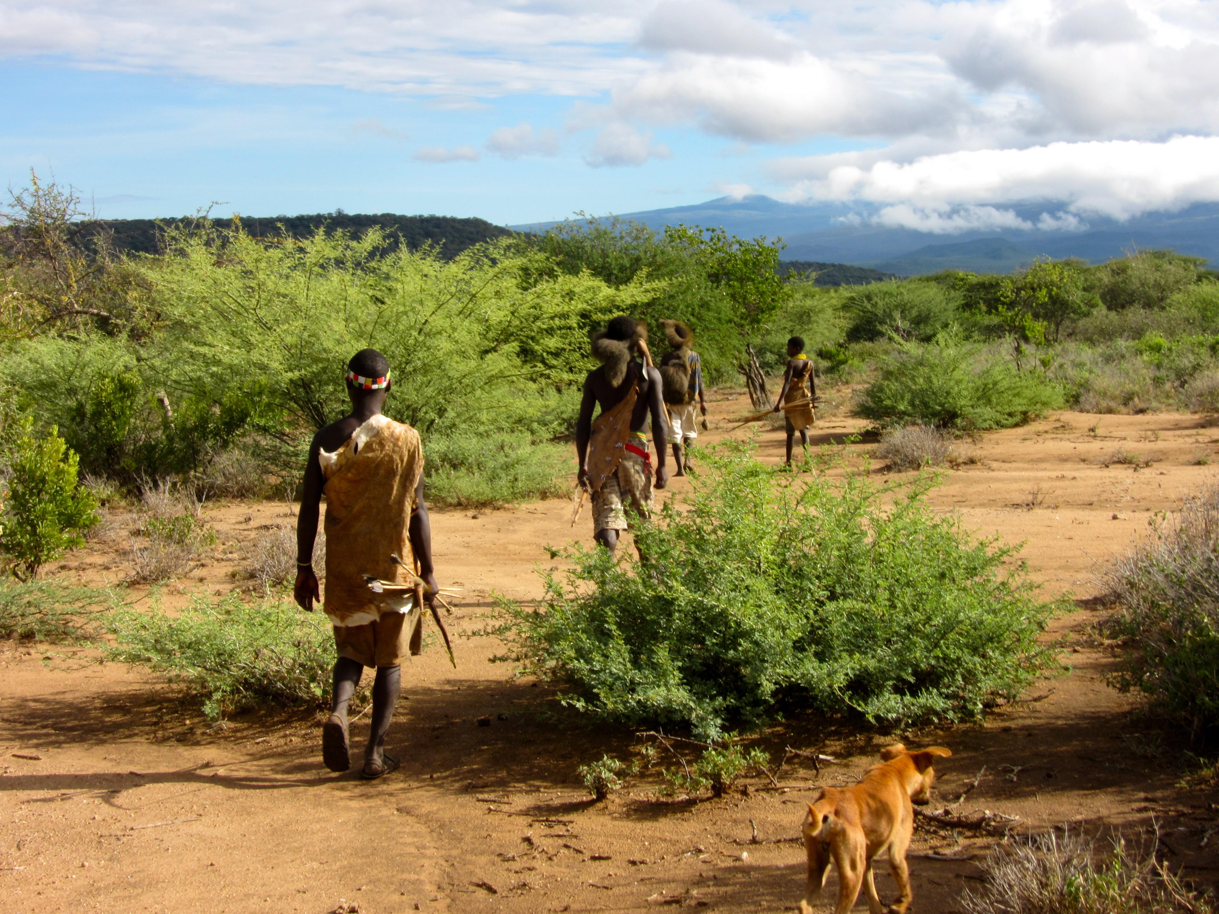 Volunteering and Going on Safari in Tanzania