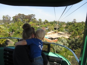 Looking out at the zoo from the aerial tram